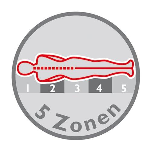 BT285 mit 5 Zonen